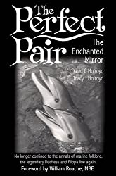 The Perfect Pair: The Enchanted Mirror