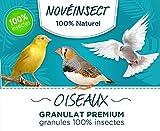 Alimentation granulat Premium 100% Insecte pour Vos Oiseaux - 110 grammes - Aliment complémentaire