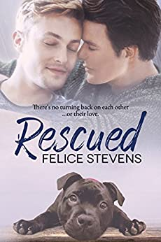 Rescued: A Rescued Hearts Novel by [Stevens, Felice]