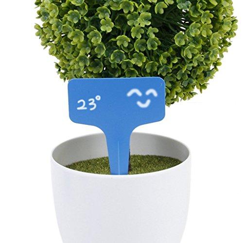 Etiquetas para horticultura - SODIAL(R) 100 piezas 10x6cm etiquetas de signos de tipo T de plantas de arbol(azul)