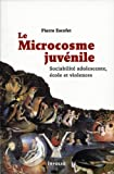 Le Microcosme juvénile. Sociabilité adolescente