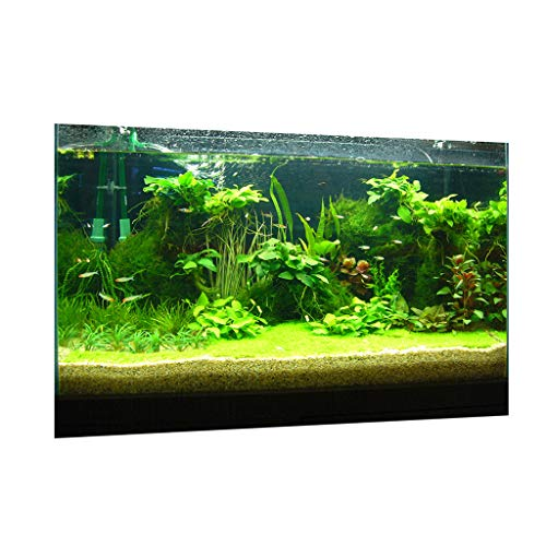 KESOTO Aquarium Fotorückwand Rückwandfolie Poster - Wasserpflanzen, 122 x 46 cm