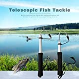 ningbao551 60cm Or 120cm Stainless Steel Sea Telescopic Fishing Gaff Aluminum Alloy Spear Hook Fish Tackle Outdoor Fishing Tool