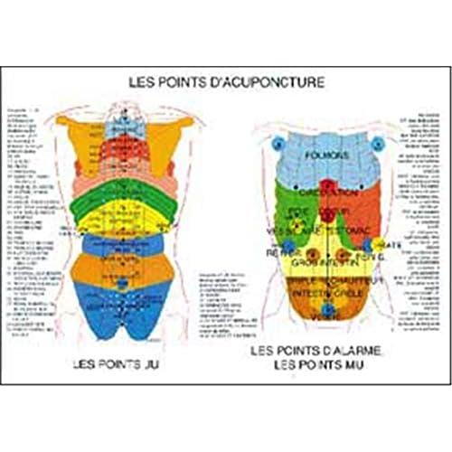 Planche points d'acupuncture - 42x61