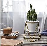 Pot de fleurs Pots en intérieur, y & M (TM) 11,4cm moderne Jardin blanc Bol rond en céramique avec support pour air Plante en métal pour pot de fleurs artificielles Cactus White+Gold