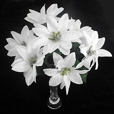 7 White Poinsettia Christmas Flower heads