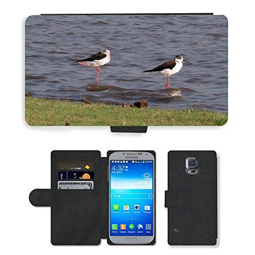hello-mobile PU LEDER LEATHER FLIP CASE COVER HÜLLE ETUI TASCHE SCHALE // M00137338 Stelzenläufer Gemeinsamen Stelzenläufer // Samsung Galaxy S5 S V SV i9600 (Not Fits S5 ACTIVE)