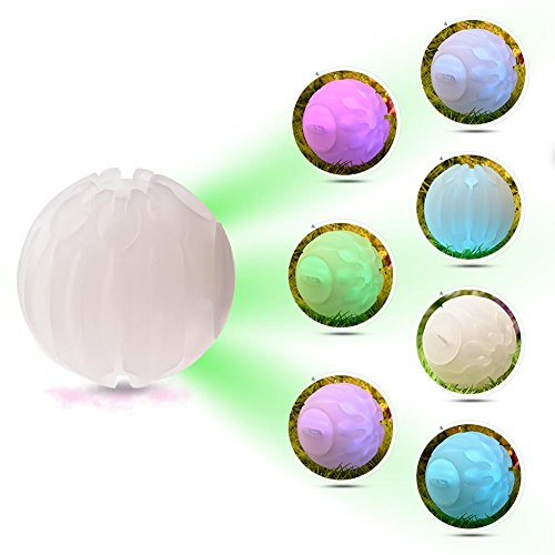 Glow Spielzeug Glühend Ball Hundekugeln LED Glow Ball Pet Toys, LED Bounce Licht Ball Wasserdicht Kugel Glow Ball Training für Hunde Katzen Nacht spielen