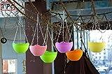 #10: Ekron Hanging Plastic Flower Pots Colorful Hanging Pots With Hanging Chain Home Interior Decoration Garden Decor 1Pc ,Random Colour