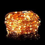 Beauty Lights Copper String Led Light 10M 100 Led Usb Operated Wire Decorative Lights Diwali Christmas