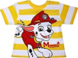 Best Paw Paw Shirts - Paw Patrol Boys Pups Stripe Short Sleeve T Review