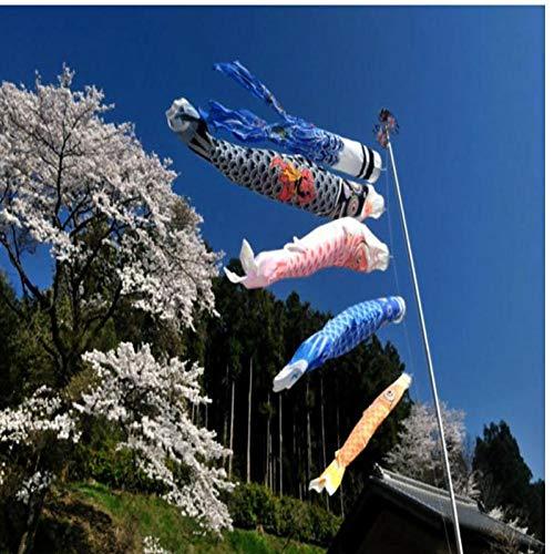 Zonster 5Pcs 55cm Japanische Karpfen-Flagge Karpfen Banner Windsock Segelfisch Segelfisch Wind Streamer Multicolor Fisch - Flagge Streamer