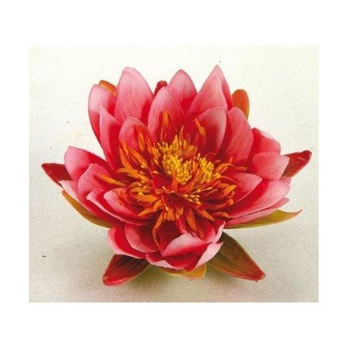 Apollo-Gardening-Ltd-Ubbink-nnuphar-14-cm-rose-1389447