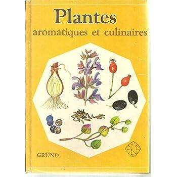 Plantes aromatiques et culinaires