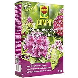 Compo 21577 - Fertilizante (rododendro)