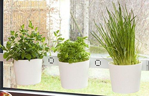 Kräuterleiter Pflanzenleiter Kräutergarten weiß Fenster- und Wandmontage