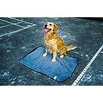 ThinkPet Multi-function Potable Waterproof Car Seat Protector Blanket for Pet,Best Choice for Outdoor Indoor Activities… 13