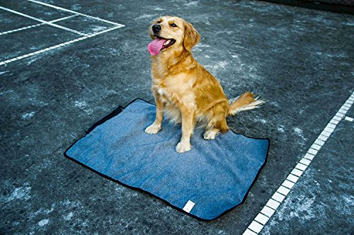 ThinkPet Multi-function Potable Waterproof Car Seat Protector Blanket for Pet,Best Choice for Outdoor Indoor Activities… 6