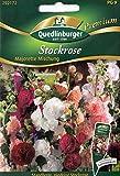 Stockrose, standfest, Alcea rosea, ca. 30 Samen