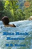 Image de Blue Rock Rescue (English Edition)