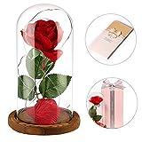 anaoo Rosa de Seda Artificial roja Rosas La Bella y la Bestia con una cúpula de Cristal Sobre una Base Regalo para el día de San Valentín Boda de cumpleaños de Aniversario Regalo para Madres
