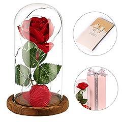 Idea Regalo - Anaoo Rose La Bella e la Bestia in Cupola Vetro Regalo per Il Giorno di San Valentino Regali Compleanno Anniversario Matrimonio Regalo di Festa della Mamma