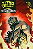 Frankenstein (Classics Illustrated Study Guides Series) by Mary Wollstonecraft Shelley (1997-10-02)