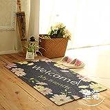 MKSFY Rutschfeste Absorbierende Bodenmatte Tür Matte Draht Teppich Matte für Badezimmer Küche Studie Schlafzimmer Korridor Eingangstür Wohnzimmer, 40 cm * 60 cm