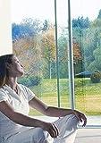 d-c-fix, Sonnenschutzfolie Selbstklebend, 99% UV Schutz, 92 x 200 cm