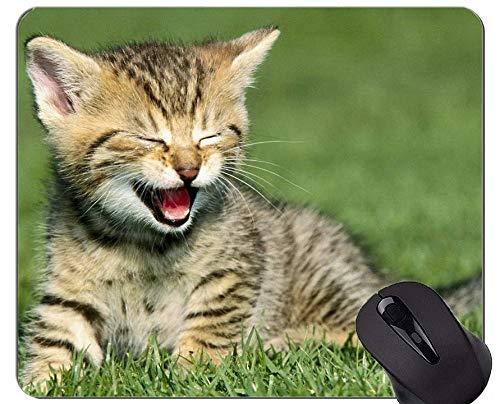 Mauspad mit genähtem Rand, aktive Katze Home-Office-Computerzubehör ()