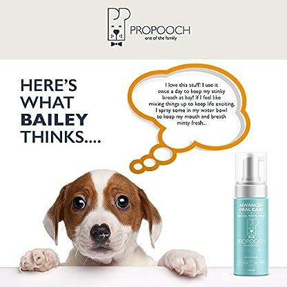 Pro Pooch Dog Breath Freshener - Combat Bad Breath, Tartar & Plaque Build Up w/Dog Mouthwash - Fresh Breath & Safe Oral… 7