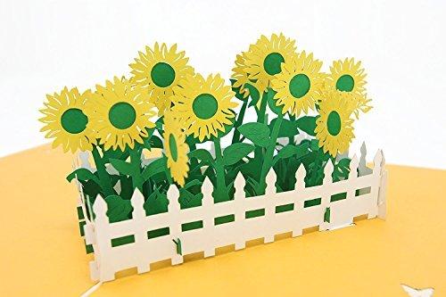 PopLife Sunflower...