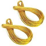 Healifty Corda di filo metallico non stretch per lavori di creazione di gioielli e cartellini 2 rotoli / 100m (oro)