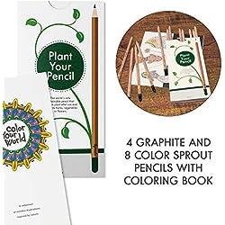 Pack de lápices plantables de colores para niños | caja de 12 | libro para colorear incluido | Edición de viaje.