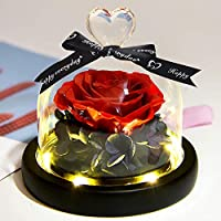 ZLDM Eternal Rose +LED Light, Gifts for Women or Man, Gifts for Mum and Dad, Handmade Preserved Fresh Flower Stunning Rose Best Gift Beauty and The Beast, 3-5 Years Will Not Fade