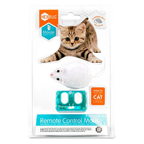 Hexbug 480-4466 Remote Control Mouse Cat Toy, Spiel