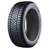 Winterreifen Firestone Destination Winter 215/70 R16 100T