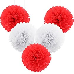 ULTNICE 5pcs Tissue Paper Craft Flowers Balls Tissue Paper Pom Poms for Wedding Bayby Shower Party Decor