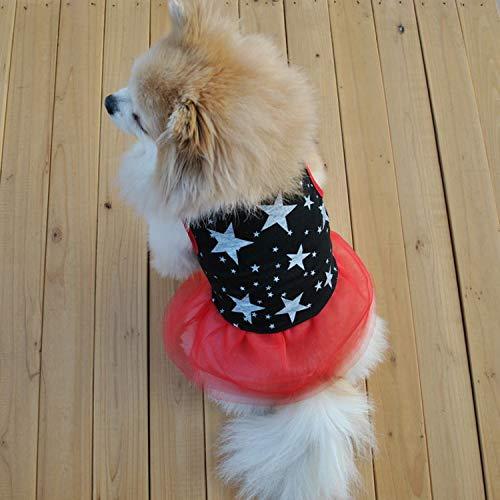FairytaleMM Sommer Mode Haustier Hund Kleidung Sleeveless Stars Print Weste Rock Garn Spitze Rock Prinzessin Kleid Party Kostüm Bekleidung