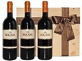 Solaia Tenuta Tignanello 2013 Toscana IGT in 3-Flaschen-Holzkiste mit Satinband - Absolute Spitzenweine aus Italien
