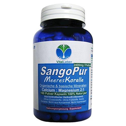 Sango Pur 2:1 Meereskoralle 180 Kapseln #25052 | Organisch Basische Mineralien + Calcium & Magnesium im Verhältnis 20% zu 10% | Entsäuern Entgiften Entschlacken | 100% NATUR pur OHNE ZUSATZSTOFFE! (Organische Elektrolyte)