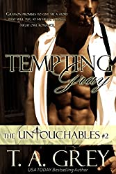 Tempting Gray (The Untouchables #2) (paranormal erotic romance): The Untouchables, #2 (English Edition)