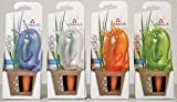 4er-Set Bewässerungskugel Blumenbewässerung Wasserspender *Bördy* - H15cm