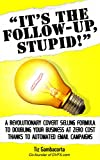It's The Follow Up, Stupid!: A Revolutionary Covert Selling Formula To Doubling Your Business At Zero Cost Thanks To Automated Email Campaigns (English Edition)