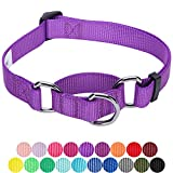 Blueberry Pet Sicherheitstraining Martingale Hundehalsband Klassisch Einfarbig 2,5 cm L Basic Nylon Hundehalsband Langlebig - Dunkel-Orchidee