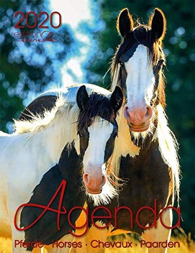 Agenda Pferd 2020: Pferde