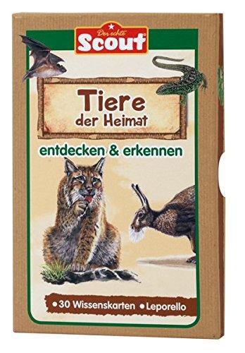 Scout Lernkarten-Box - Tiere der Heimat: entdecken & erkennen