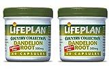 (2 Pack) - Lifeplan - Dandelion Root   60