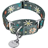 Dazzber Fashion Print and Unique Geometric Pattern Martingale Dog Collar, Silky Soft Safety Training Collars for Small to Large Dogs (Large, 1 Inch Wide, Warm Grey and Flower)