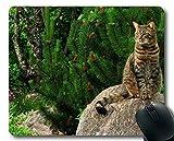 Gaming-Mauspad, Tierkatzengarten-Mauspad, Mauspad für Computer cat238